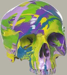 damien-hirst-hallucinatory-head-2