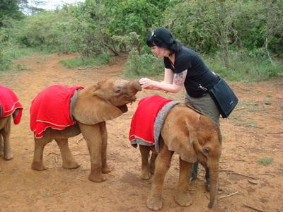 Kirsten from Roq la Rue feeding the baby Phants!