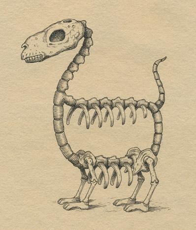 elliptical-skeleton