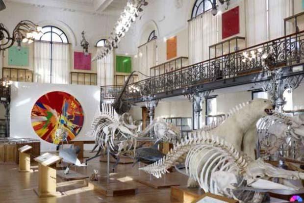 damien-hirst-exhibition-oceanographic-museum-of-monaco-3