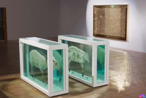 damien-hirst-exhibition-oceanographic-museum-of-monaco-4