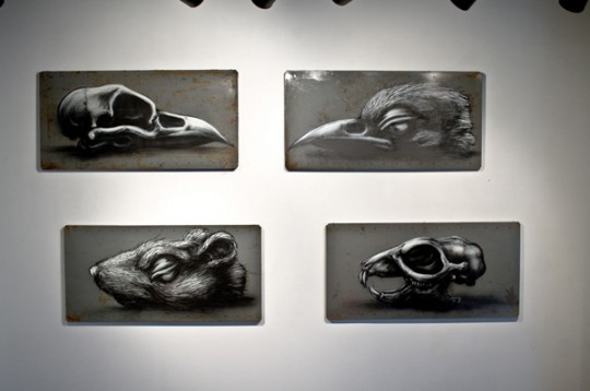 roa-factory-fresh-brooklyn-exhibition-9-540x358