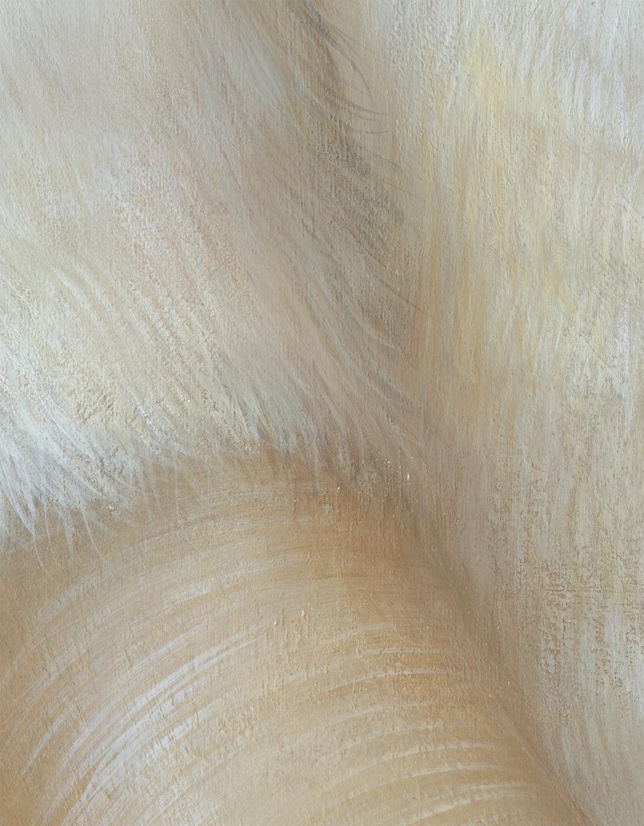 fur-detail