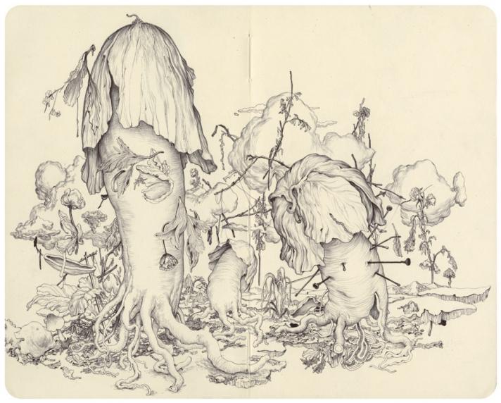 moleskine-mushrooms_full