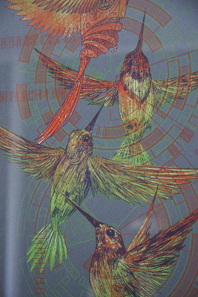 04-hologram-hummingbirds-closeup