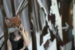 fox-detail