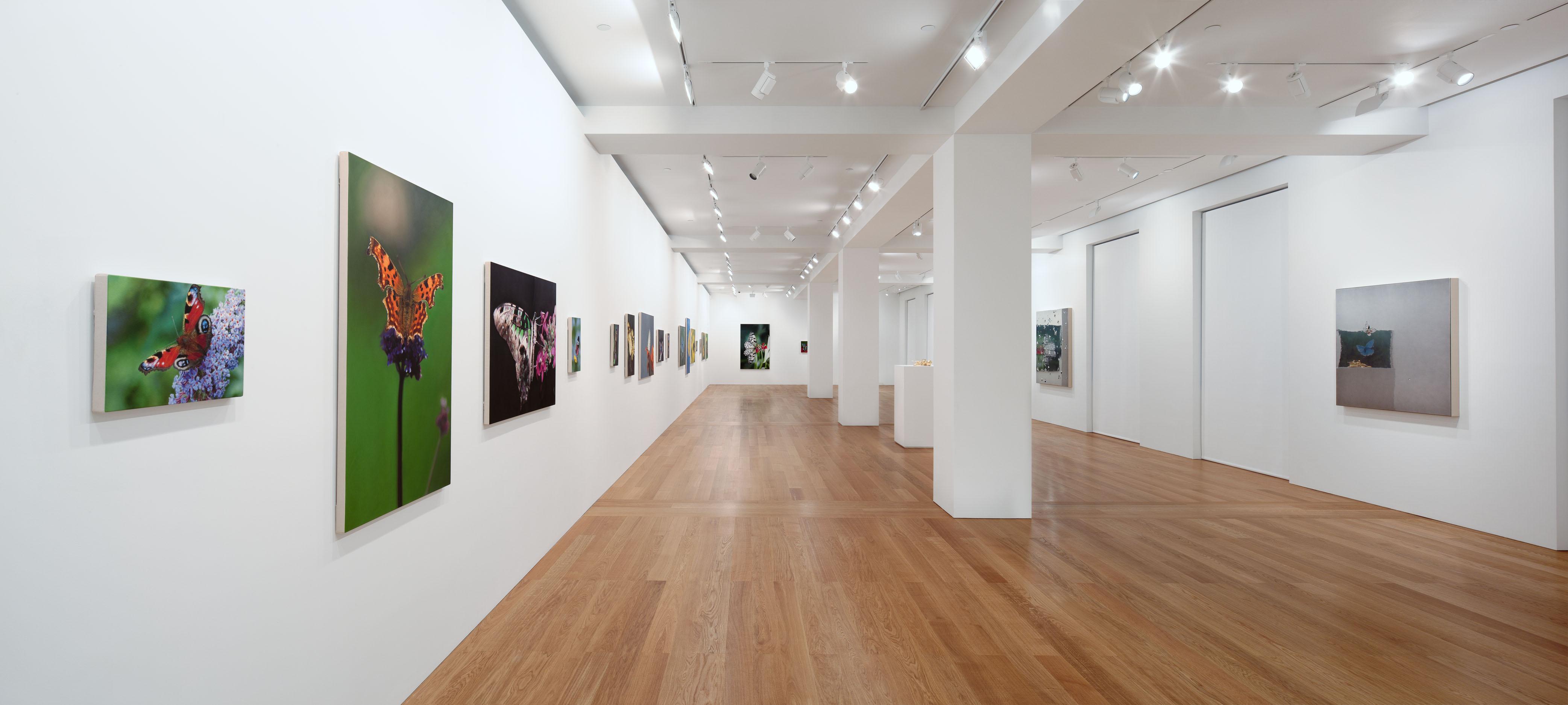 Http Arrestedmotion Com 2011 01 Showing Damien Hirst Forgotten Promises Gagosian Hong Kong Gallery Shot 17