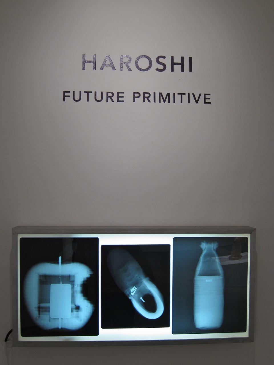 Haroshi Jonathan Levine AM 15