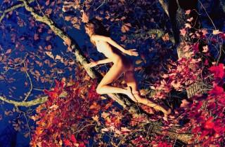 mcginley_jumpingtree