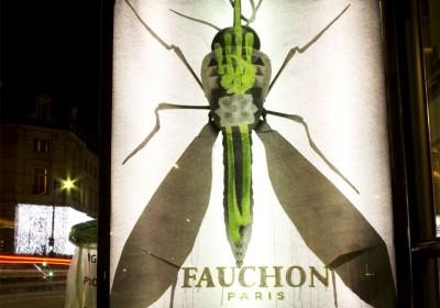 Ludo in Paris. Fake xray ads.