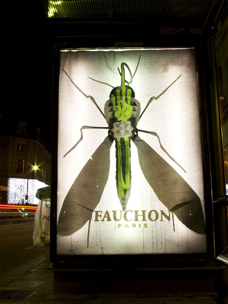 Ludo in Paris. Fake xray ads.