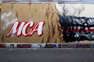 RIP-MCA-1