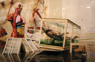 David Lachapelle seismic Shift Art HK AM 4