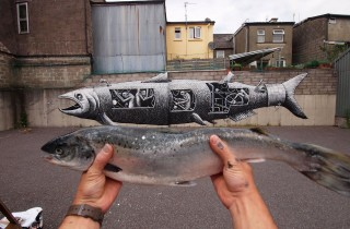 phlegm salmon