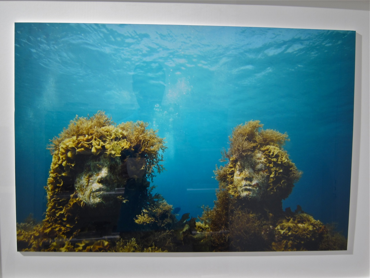 Jason deCaires Taylor Levine AM 15