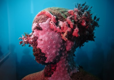 Jason deCaires Taylor Levine AM 07