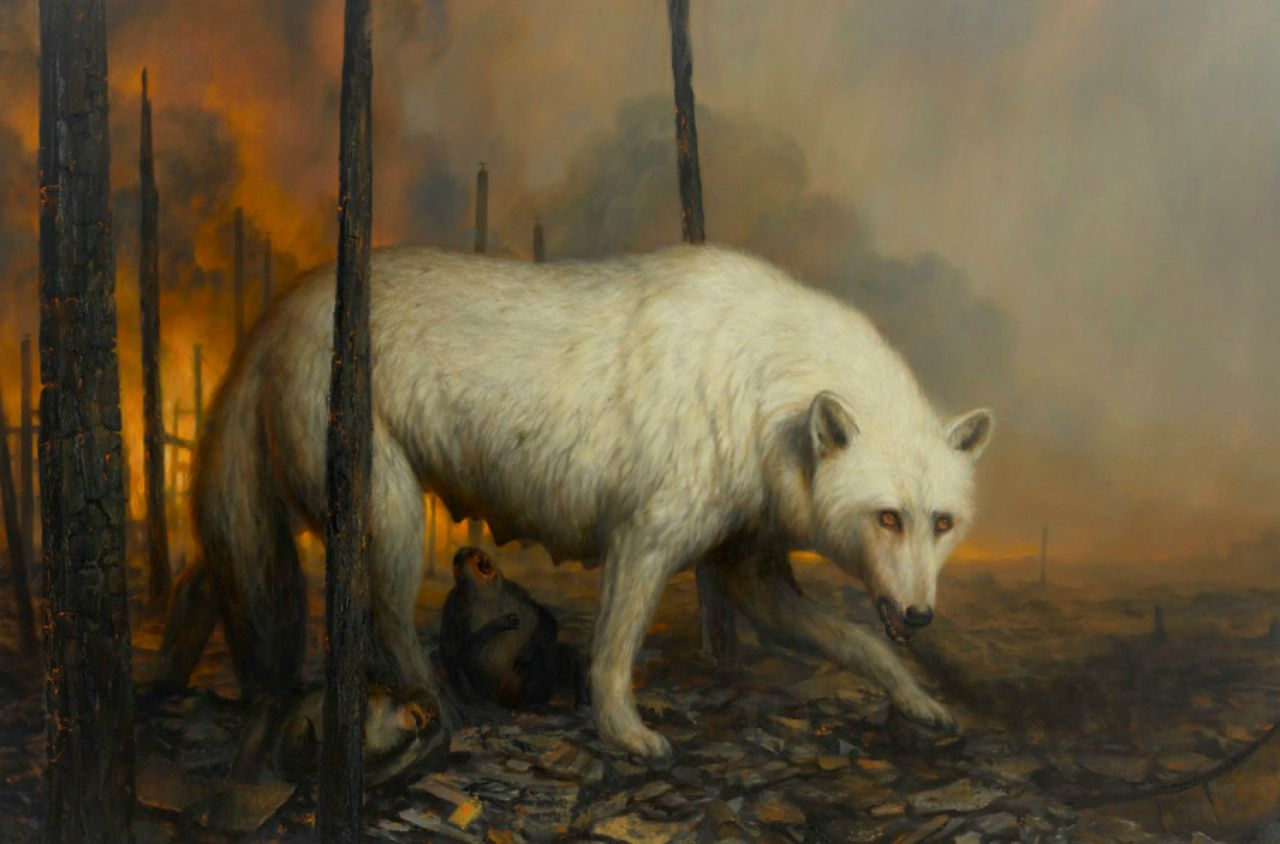 wittfooth_CH - 2