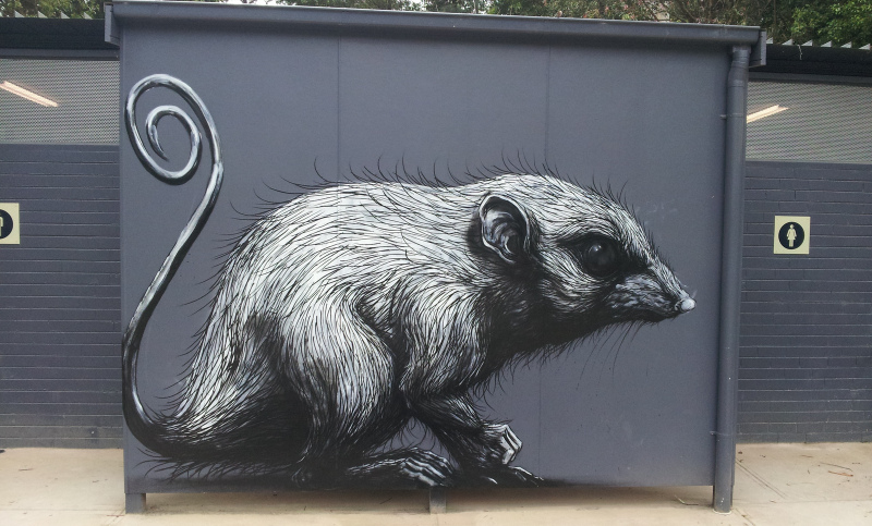 roa-healesville-australia-street-art-belgium-sab-2