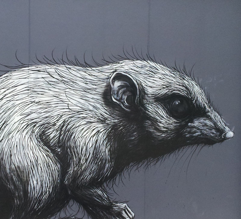 roa-healesville-australia-street-art-belgium-sab-3