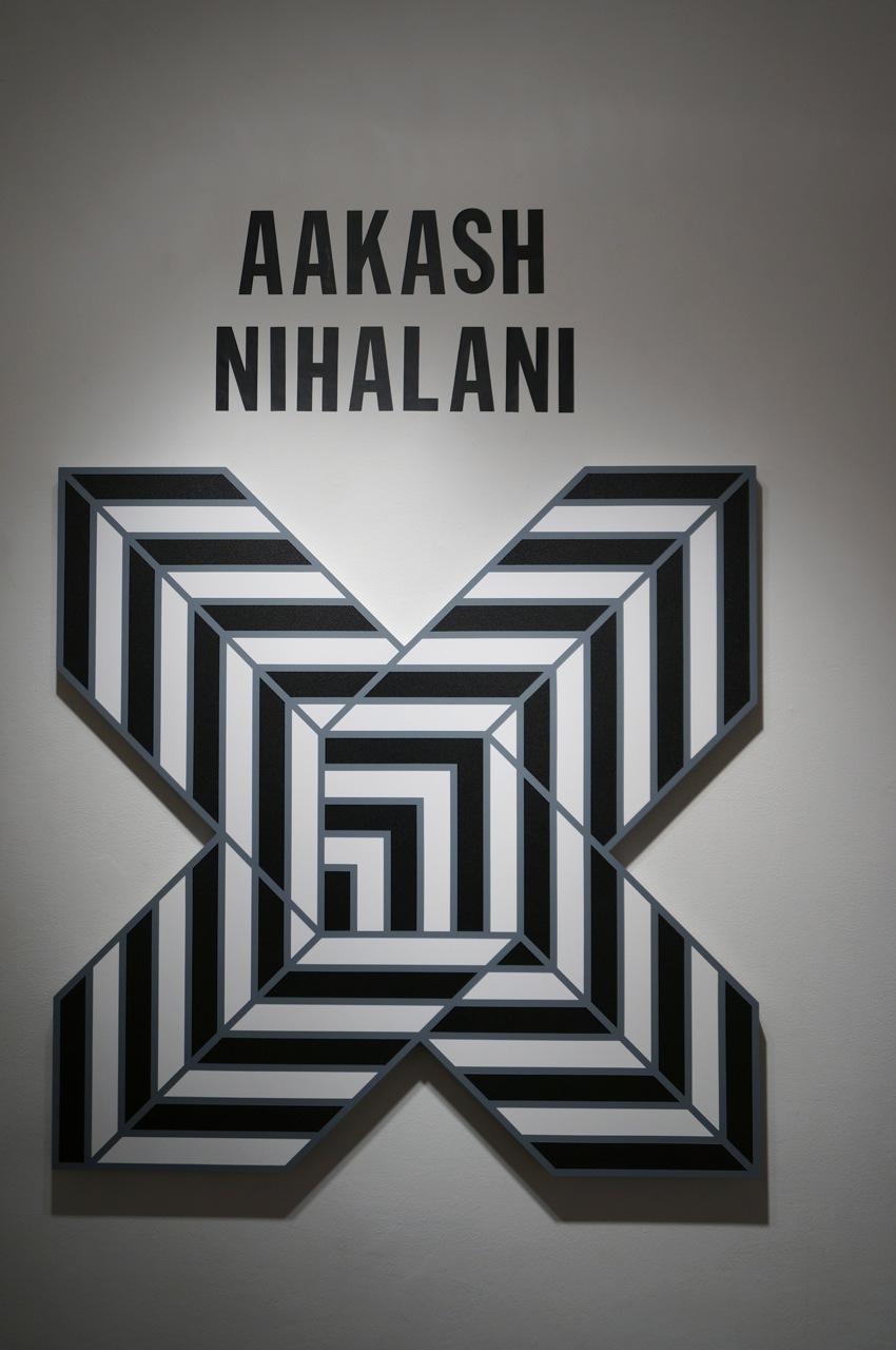 Aakash Nihalani Levine AM 01