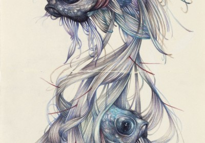 """The Hairy Fish""2012, colored pencils and ink on moleskine paper, cm 26x21"