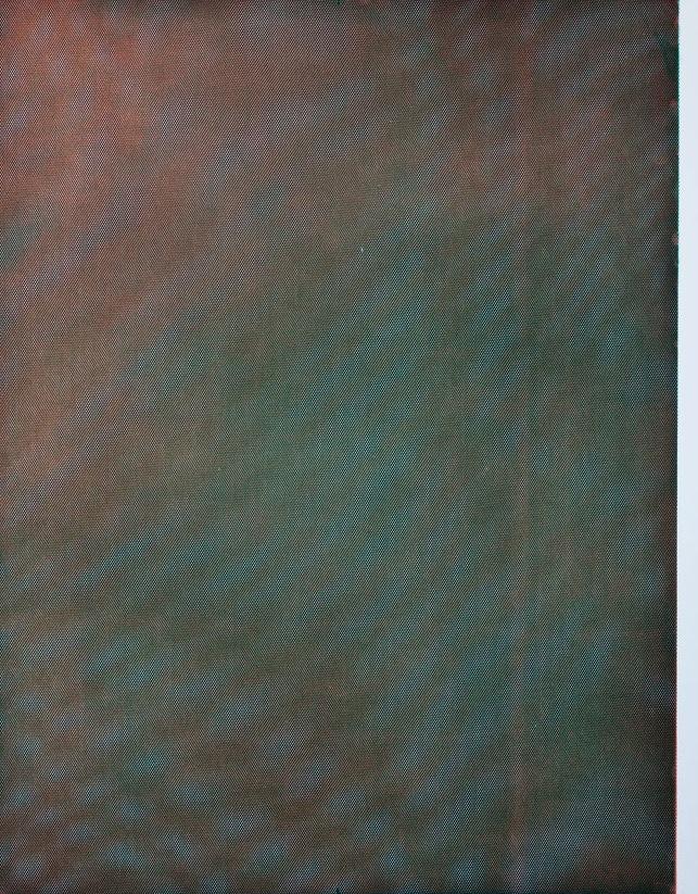Tauba Auerbach Mesh Moire Etching Paulson Bott AM 4