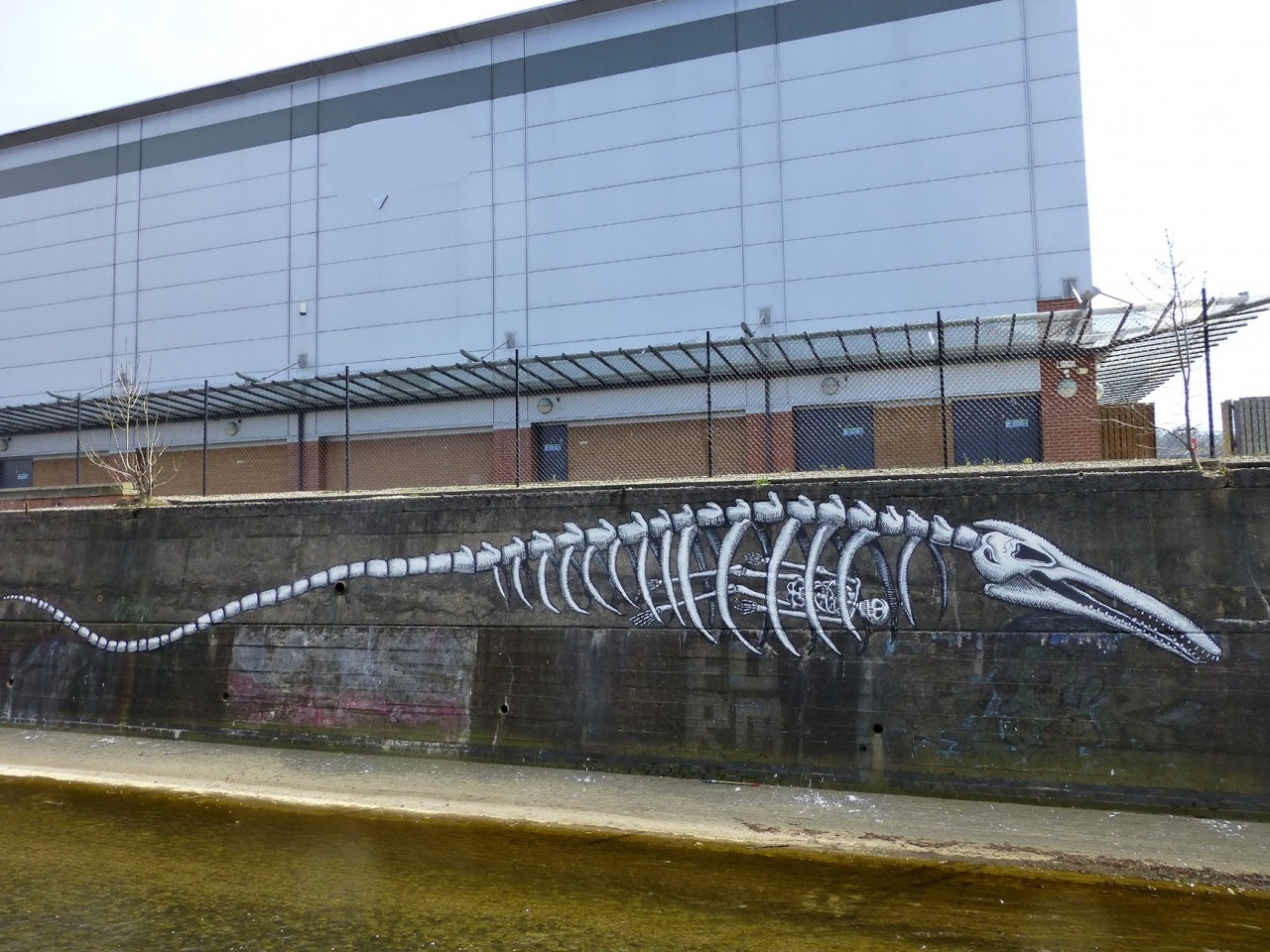 Phlegm in Sheffield.