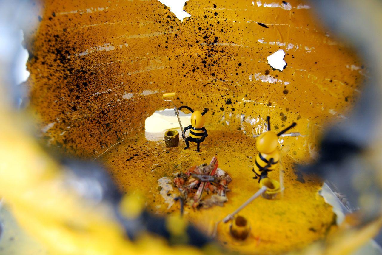 Bumblebee_Nightlight_InsideLook_endangeredHoneybees