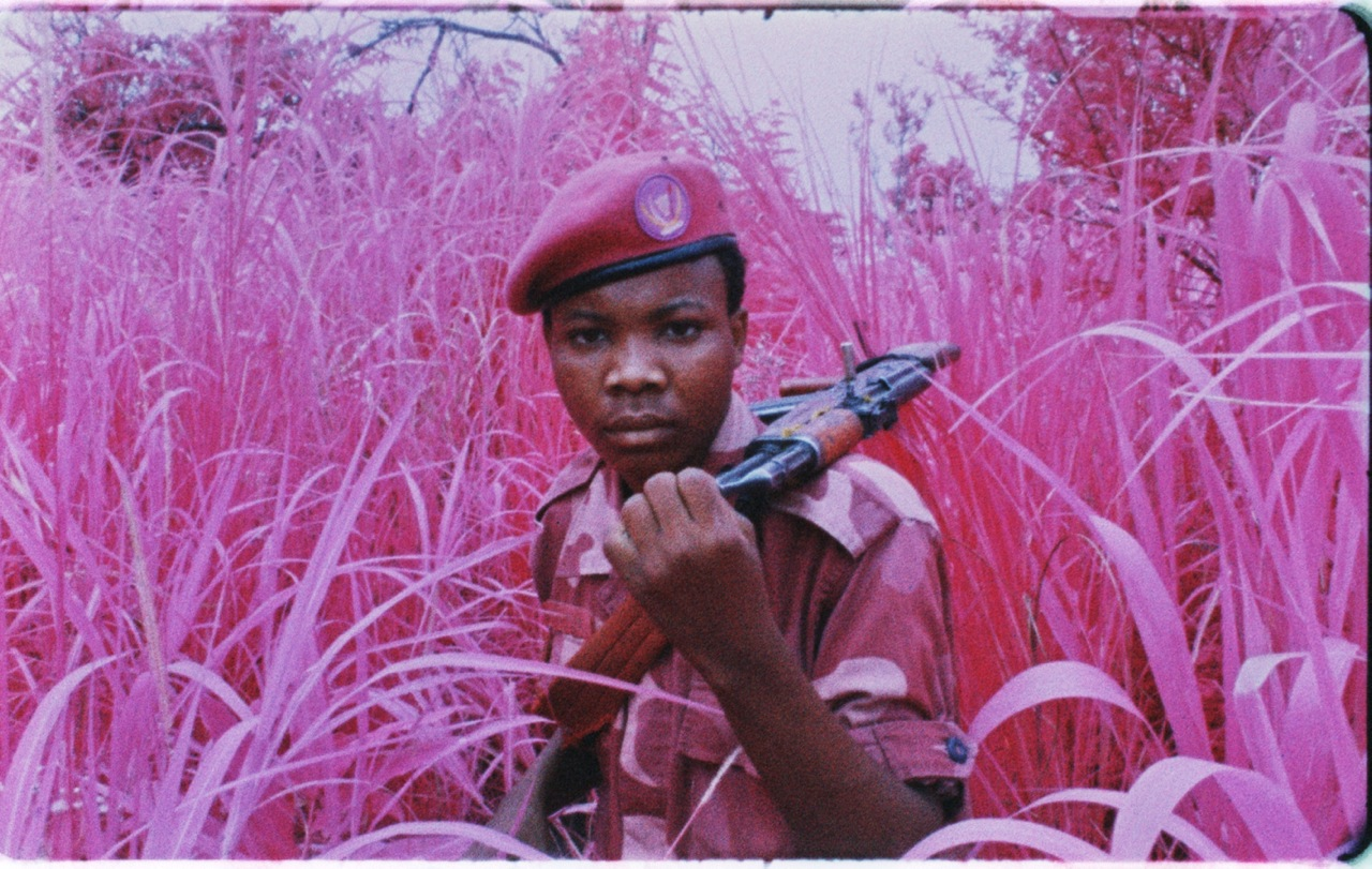 Richard Mosse, The Enclave, The Pavilion of Ireland, curated by Anna O'Sullivan.