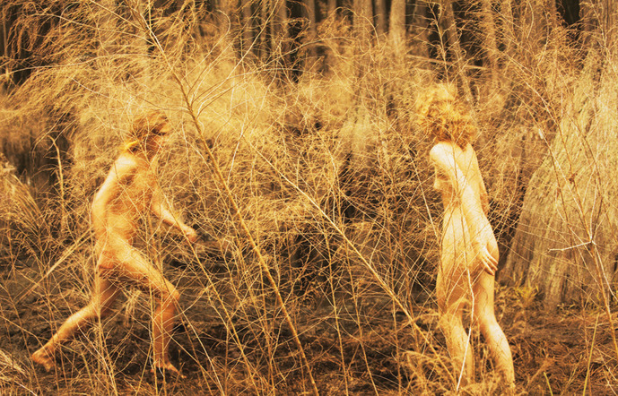 Exhibition Review: Ryan McGinley at Team Gallery — Musée