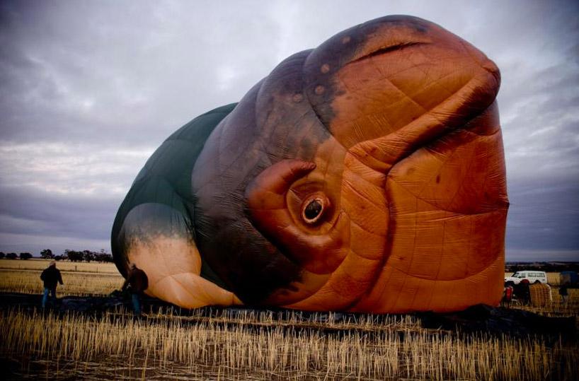 designboom-skywhale-patricia-piccinini08