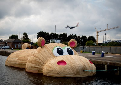 hippo-2