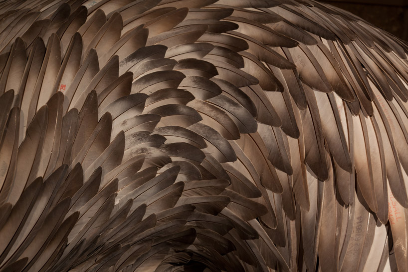 kate-mccgwire-feather-sculptures-st-mary-in-the-castle-designboom-01
