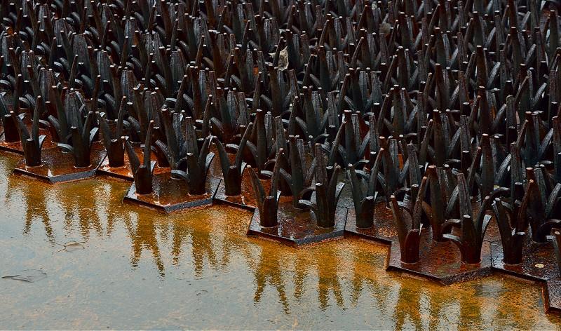Ai-Weiwei-F-Grass2