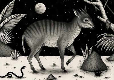 Zebraduiker-JonMacNair