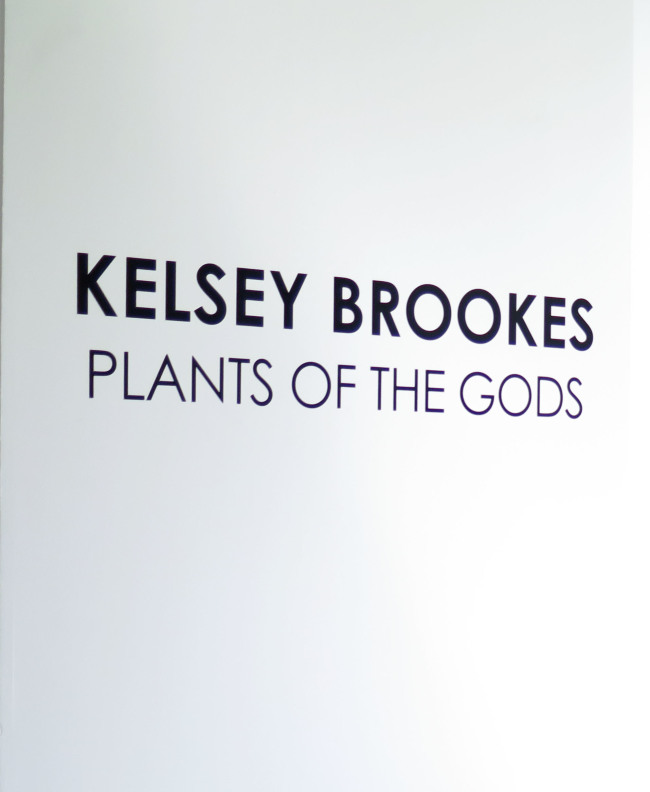 Kelsey Brookes: Plants of the Gods