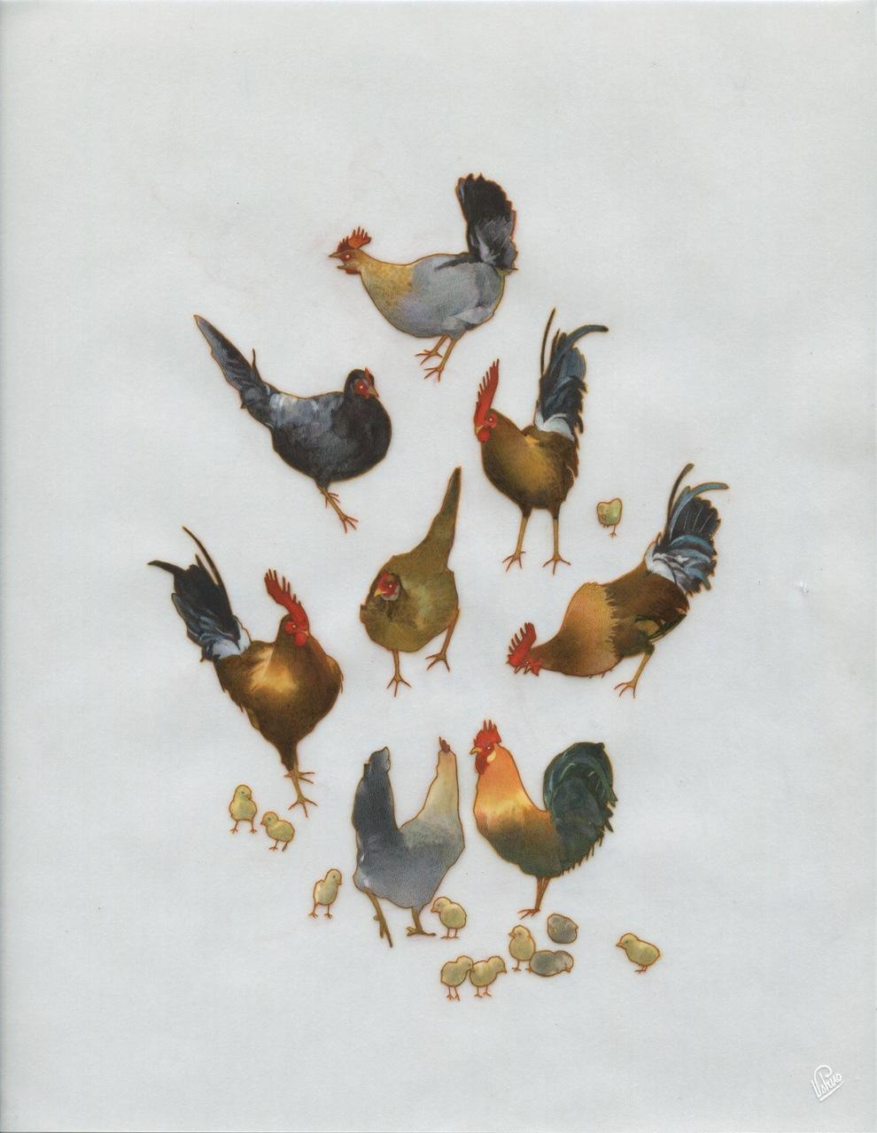 EDWIN USHIRO Wild Chickens (2015)
