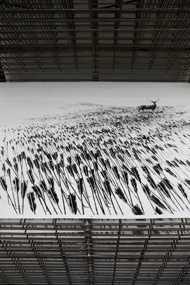 Meadow Pejac1