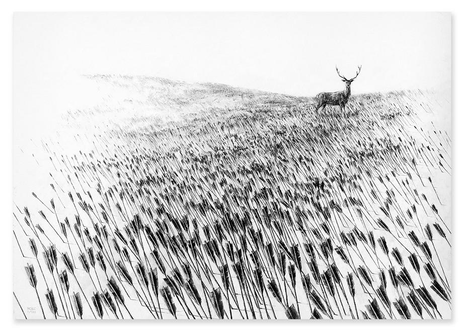 Meadow Pejac3