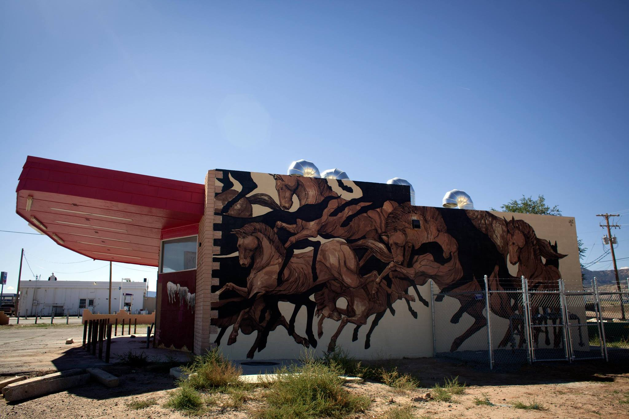 Jaz for The Painted Desert Project in Arizona.