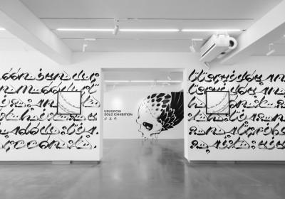 usugrow-solo-exhibition-woolloomooloo-xhibit-taipei-2