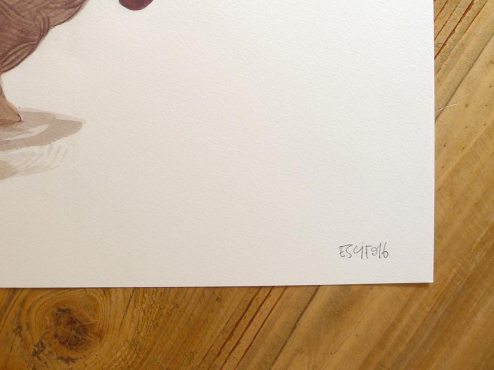 escif-cesta-con-fruta3