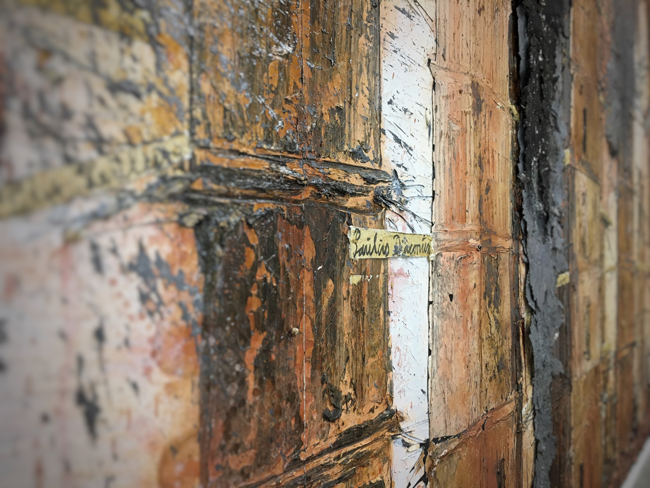 01_AnselmKiefer_PaintDetail_resized