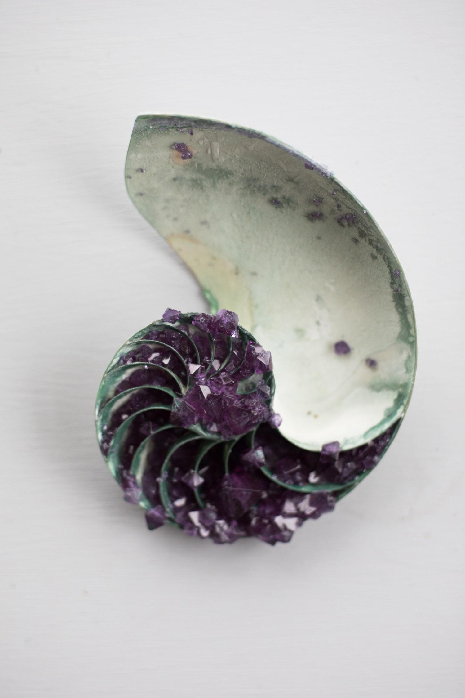 tyler-thrasher---amethyst-nautilus-shell_33390767423_o