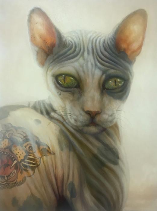 Wildcat_WIttfooth